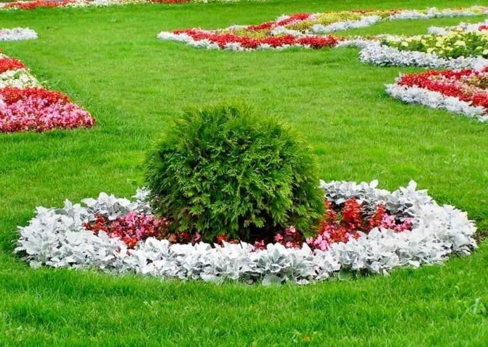 Красивые газоны и клумбы фото
